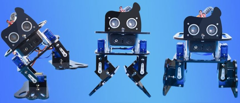 You can build and program your own robot with this simple kit