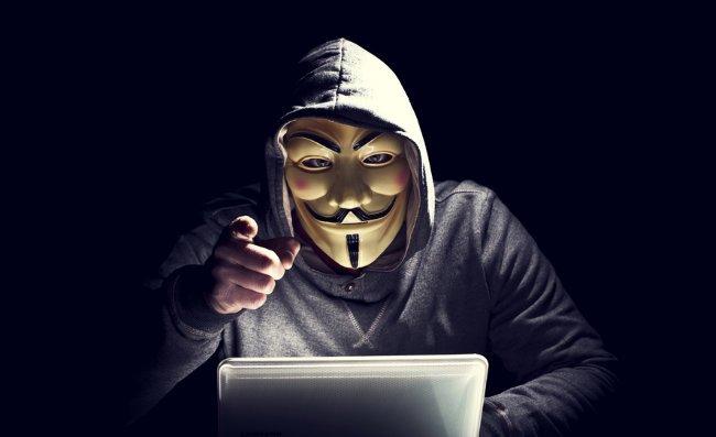 Ethical Hacker Training Bundle