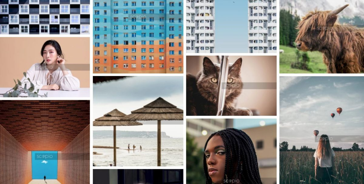 Lifetime access to unlimited Scopio stock photos is now under $25